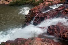 流动在小河下的水在巴西的Savannas 库存照片