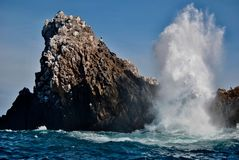 海的模仿岩石的 免版税库存照片