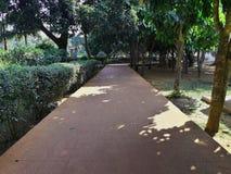 混凝土路在庭院里 库存照片