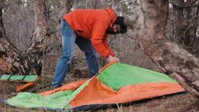 游遍杉木森林的一个孤立游人为夜设定了一个帐篷 影视素材