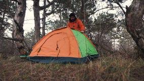游遍杉木森林的一个孤立游人为夜设定了一个帐篷 股票视频