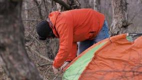 游遍杉木森林的一个孤立游人为夜设定了一个帐篷 股票录像