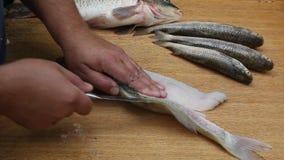 清洗和切开鱼 股票录像