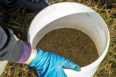 渔夫手套过滤诱饵通过筛子入桶 图库摄影