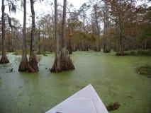 湖马丁,路易斯安那看法  免版税库存照片