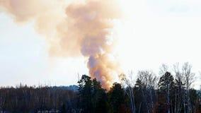 滚滚向前从受控火的烟在一个掩埋场在冬天 股票视频