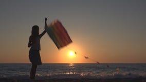 演奏在海滩在日落,海岸线的愉快的女孩的孩子飞行的风筝 股票视频
