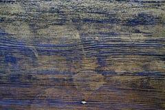 木纹理对待与乌木污点和金油漆 库存照片