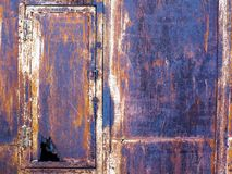 有一个漏的门的生锈的老铁箱子 免版税库存照片