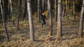 有后边背包的人游人,走通过森林 股票录像