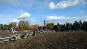 有木篱芭的农田在与通过走路的太阳的多云天空下 免版税图库摄影