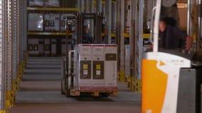 有箱子乘驾的一辆铲车在行之间在仓库,一个人驾驶一辆铲车在仓库里 工作在仓库里 股票视频