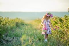 有美丽的长的金发的一女孩,穿戴在一件轻的礼服和真正的花花圈在她的头的,在 库存图片