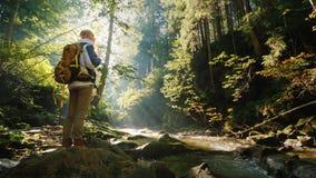 有背包的一名妇女在森林站立在清早,敬佩太阳的美丽的景色和光芒 股票录像