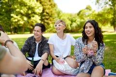 有饮料的愉快的朋友在野餐在夏天停放 库存照片