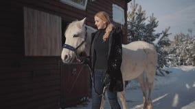 有金发的一个女孩在外套走与在新鲜空气的一个美丽的白马 年轻女人带领一匹马 股票录像