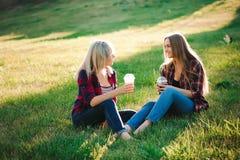 朋友获得乐趣在公园和饮料圆滑的人在野餐 库存照片