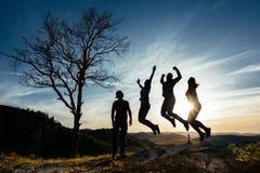 朋友获得乐趣在日落 滑稽的朋友 一群人本质上 朋友剪影  最好的朋友 朋友旅行 库存照片