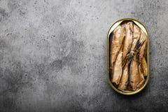 抽烟的罐装鱼 图库摄影