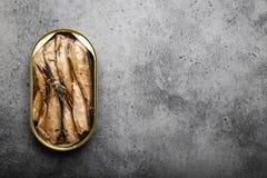 抽烟的罐装鱼 免版税库存照片