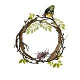 枝杈水彩绿色与叶子、蝴蝶和臭虫的圈子花圈 花卉框架,手拉的圆的模板 皇族释放例证