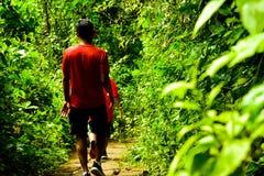 探索绿色雨林热带密林视图冒险的小学生在东亚 库存照片