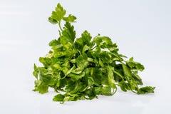 成熟新绿色束荷兰芹,在白色背景的发光的成份 免版税库存图片