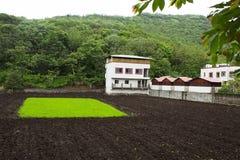 房子和领域看法从Singhgad,马哈拉施特拉,浦那 免版税图库摄影