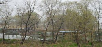 春天在高邮湖 免版税库存照片