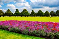 春天花在汉普顿法院庭院,伦敦,英国里 库存照片