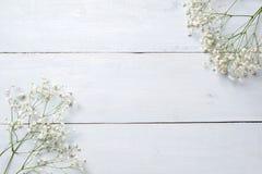 春天背景,在蓝色木桌上的花框架 横幅大模型为妇女或母亲节,复活节,春天假日 平的位置, 免版税库存图片