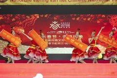 春节2019年 免版税库存图片