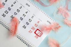 日历迷人的布局与红旗、珊瑚色的羽毛和桃红色丝带的在蓝色桌上 复活节庆祝的概念 免版税库存图片