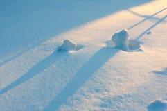 日落光和阴影在雪纹理 阿尔卑斯包括房子场面小的雪瑞士冬天森林 斯诺伊石头 图库摄影