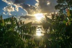 日落的悉尼 库存照片