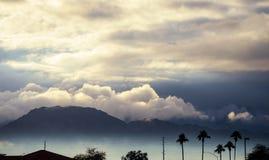早晨在剪影棕榈亚利桑那,美国的山场面 库存图片