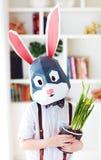 时髦的多角形复活节兔子,多角形面具画象与新春天盆的花的 免版税库存图片