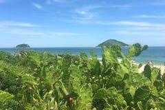 旅途通过里约热内卢 库存图片