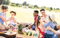 愉快的多种族家庭获得与孩子的乐趣在野餐烤肉聚会-在喜悦和爱概念的多文化幸福 免版税库存照片