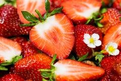整个成熟草莓-被切和 库存照片