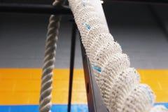 扭转的垂悬的绳索 库存图片