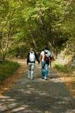 手拉手走在路的夫妇在木头中间 库存图片