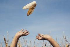 拿着玉米的人被扶养在天空 库存图片