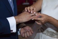新娘和新郎的手的细节 免版税库存图片