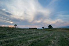 新近地削减干草领域 免版税库存图片