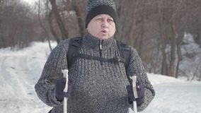 活跃参与北欧走一名年长妇女用在冬天森林健康生活方式概念的棍子 成熟 股票视频