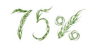 75%文本,从绿色叶子的百分之七十五 额嘴装饰飞行例证图象其纸部分燕子水彩 向量例证