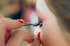 睫毛移动程序克罗斯 有长的鞭子的妇女在美容院 睫毛引伸 关闭,宏指令 免版税库存图片