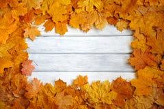 秋天框架,白色,木表面上的黄色叶子 免版税图库摄影