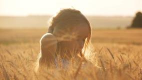 秀丽享受自然麦田的女孩户外 在秋天领域的俏丽的儿童女孩戏剧在日落 手  股票录像